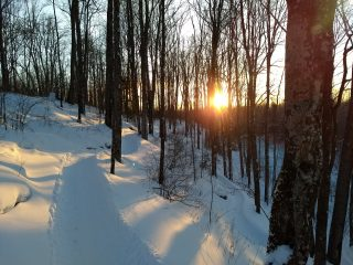Sunset On Fat Biking Trail